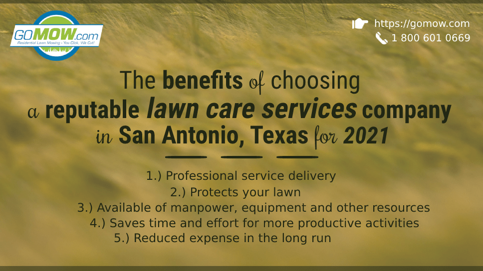 the-benefits-of-choosing-a-reputable-lawn-care-services-company-in-san-antonio-texas-for-2021