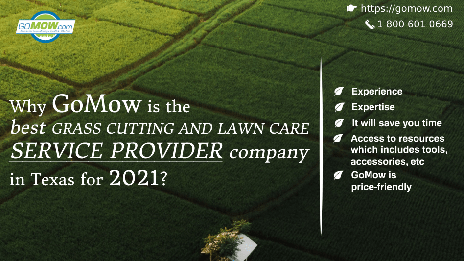 why-gomow-is-the-best-grass-cutting-and-lawn-care-service-provider-company-in-texas-for-2021