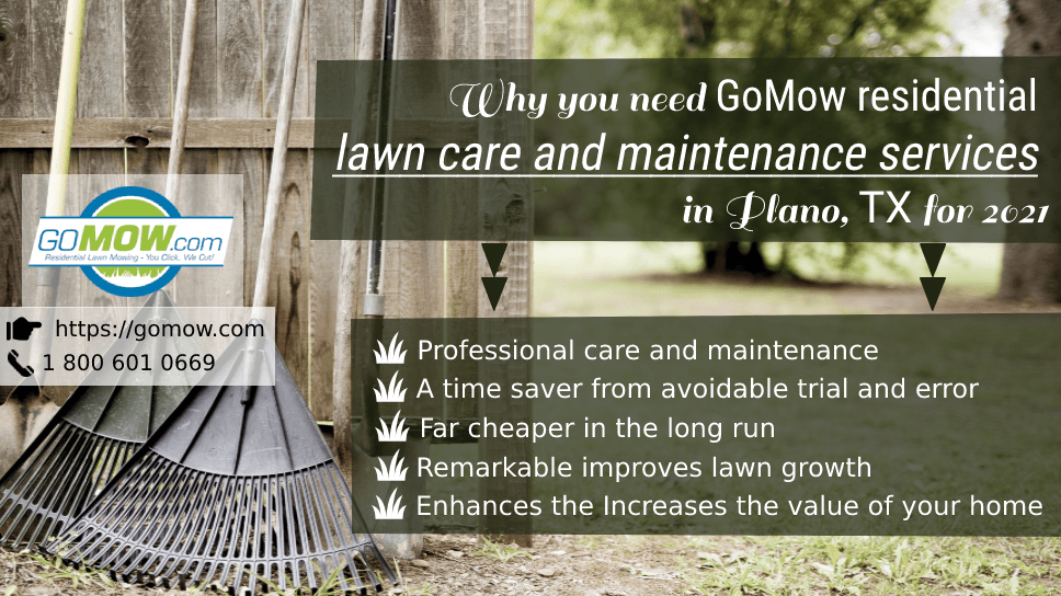 why-you-need-gomow-residential-lawn-care-and-maintenance-services-in-plano-tx-for-2021