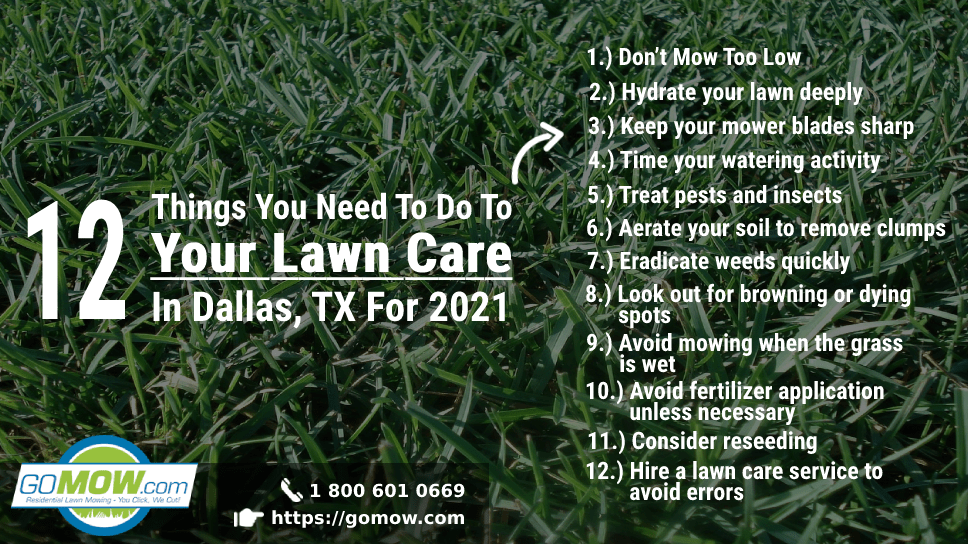 12-things-you-need-to-do-to-your-lawn-care-in-dallas-tx-for-2021