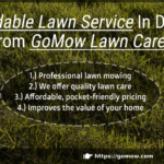 affordable-lawn-service-in-dallas-texas-from-gomow-lawn-care-service
