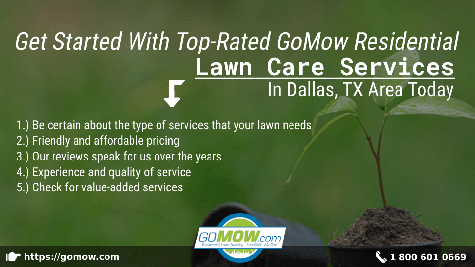 get-started-with-top-rated-gomow-residential-lawn-care-services-in-dallas-tx-area-today