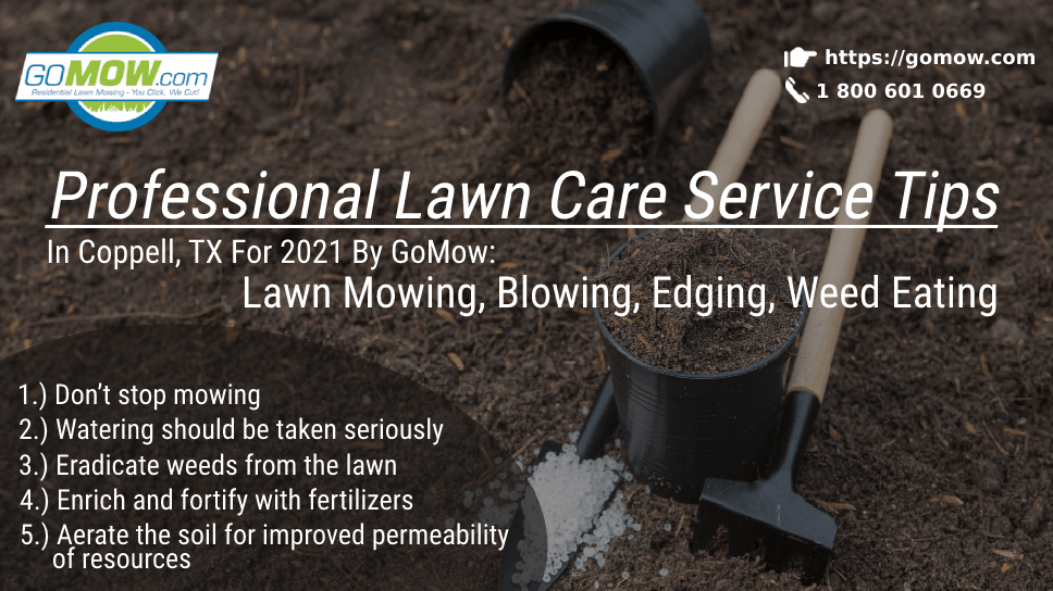 professional-lawn-care-service-tips-in-dallas-tx-for-2021-by-gomow-lawn-mowing-blowing-edging-weed-eating