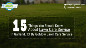 15-things-you-should-know-about-lawn-care-service-in-garland-tx-by-gomow-lawn-care-service