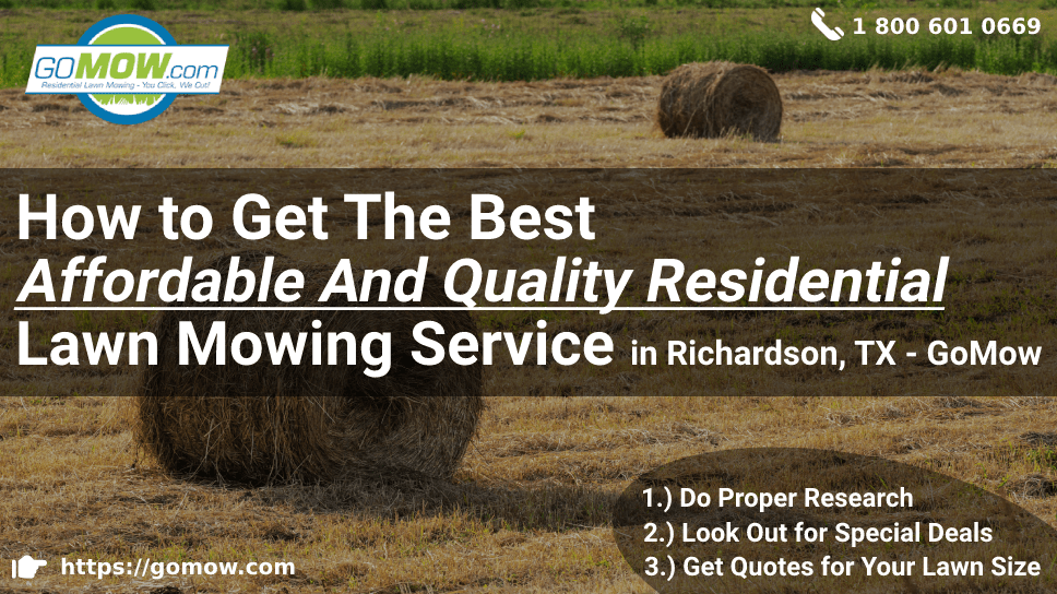 how-to-get-the-best-affordable-and-quality-residential-lawn-mowing-service-in-richardson-tx-gomow