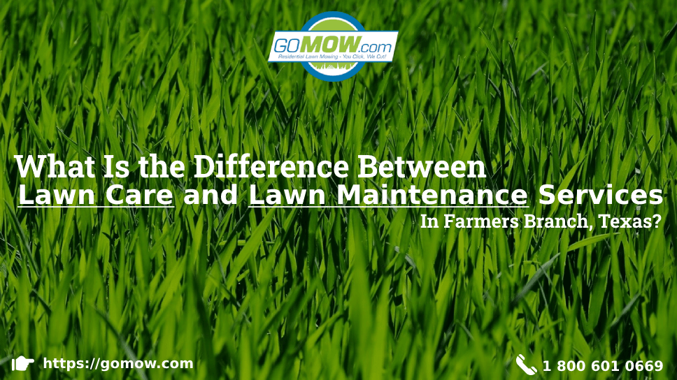 what-is-the-difference-between-lawn-care-and-lawn-maintenance-services-in-farmers-branch-texas