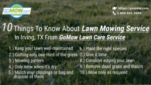10-things-to-know-about-lawn-mowing-service-in-irving-tx-from-gomow-lawn-care-service
