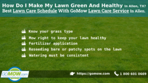how-do-i-make-my-lawn-green-and-healthy-in-allen-tx-best-lawn-care-schedule-with-gomow-lawn-care-service-in-allen