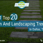 2021-top-20-lawn-and-landscaping-trends-in-dallas-texas