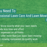 why-do-you-need-to-hire-a-professional-lawn-care-and-lawn-mowing-services-in-allen-tx